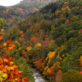 A West Virginia View  by Lorie  Carpenter  - Landscapes Mountains & Hills ( orange, mountains, red, colors, green, fall, trees, landscape,  )