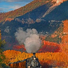 The Durango Train 01 by Jeff Stallard - Transportation Trains ( steam engine, durango, railroad, colorado, train, silverton )