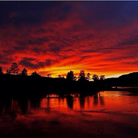 Big Bear Lake, Ca by Janet Aguila Krause - Instagram & Mobile iPhone (  )