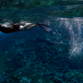 Snorkeller by Keith Sutherland - Sports & Fitness Swimming ( maui, snorkeller, underwater )