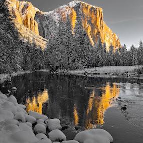 Yosemite Sunrise Mono by Patrick Flood - Landscapes Mountains & Hills ( photosbyflood, yosemite view, monochromatic, national park, yosemite, el capitan, merced river, sunrise )