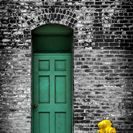 Behind The Green Door by Marc Shur - Buildings & Architecture Architectural Detail ( pasadena, old, doorway, california, green, brick, street, door, architectural, yellow, wall )