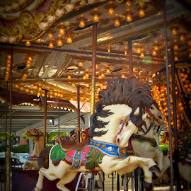 by Tammy Price - Artistic Objects Other Objects ( horse, fair, mary go round )