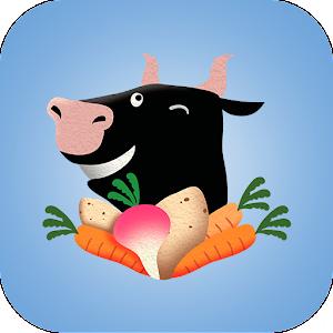Cover art Vegetarian Travel Translator