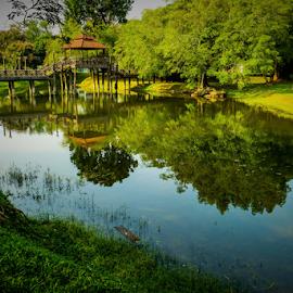 Ipoh City Park by Joseph Law - City,  Street & Park  City Parks ( hut, bushes, reflections, trees, malaysia, perak, city park, ipoh, pond, wooden bridge )