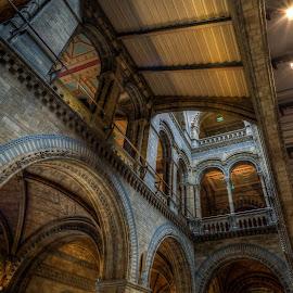 by Etan Rozin - Buildings & Architecture Architectural Detail ( Architecture, Ceilings, Ceiling, Buildings, Building )