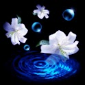3D lovely Orchid icon
