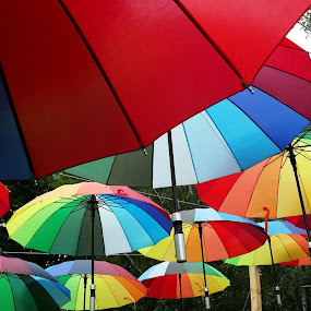 umbrellas by Daniela Murat - Artistic Objects Other Objects