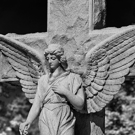 angelic by Lennie Locken - Buildings & Architecture Statues & Monuments