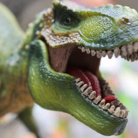 T-Rex by Amber Powell - Artistic Objects Toys
