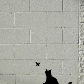 Black & White Wall by Lorie  Carpenter  - Buildings & Architecture Other Exteriors ( butterfly, cat, white, buildings, blocks, black, wall )