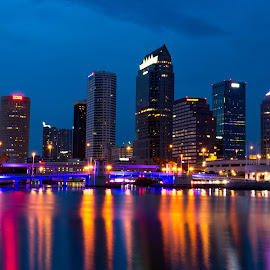 Tampa Downtown Skyline Night view by Desai Photography - City,  Street & Park  Skylines ( downtown tampa, tampa skyline, tampa )