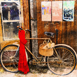 by Bente Agerup - Transportation Bicycles ( bicycles, old, bikes, reflections, windows, baskets )