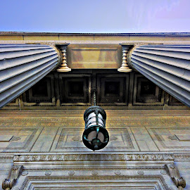 Look Up by Tricia Scott - Buildings & Architecture Architectural Detail ( building, details, exterior, columns, architecture, light, up )