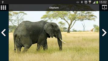 Screenshot of Emit Free