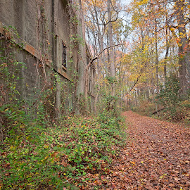 Fall Power House Trail by Nicolas Raymond - Landscapes Forests ( wood, america, north point state park, colorful, corridor, wide-angle, vibrant, architecture, north, landscape, leaves, usa, colour, edgemere, north point, colourful, sky, nature, autumn, passage, foliage, trail, path, maryland, power, building, hdr, park, colors, forest, scenic, woods, concrete, united states, colours, passageway, landmark, point, urbex, color, wide angle, fall, scene, trees, scenery, abandoned )