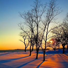 Winter sunset, Old Greenwich, CT. by John Hayes - Landscapes Sunsets & Sunrises