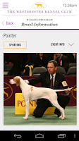 Screenshot of Westminster Dog Show '14