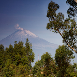 Popocatepetl and trees by Cristobal Garciaferro Rubio - Landscapes Travel ( popo, mexico, puebla, popocatepetl )