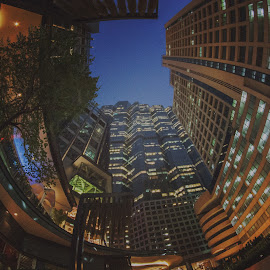 Bangkok cityscape with fish eyes lens by Waraphorn Aphai - Buildings & Architecture Office Buildings & Hotels ( bangkok, night photography, colorful, twilight, buildings, fish eye, cityscape, photography, mood factory, vibrant, happiness, January, moods, emotions, inspiration )