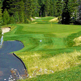 Squaw valley Golf Course by Samantha Linn - Sports & Fitness Golf
