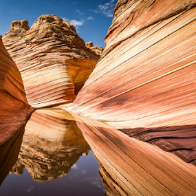 by Francesco Riccardo Iacomino - Landscapes Caves & Formations ( curve, explorations, reflection, dunes, coyote buttes, jurassic-age navajo sandstone, erosion, rocky, calcifying, rock, remote, cave, colorado plateau, curves, hiking, exploring, navajo, paria canyon-vermilion cliffs wilderness, jurassic, nature, grand, arizona, wonder, southwest, sandstonec, rock formation, alone, water, sand, orange, wild, undulating, desert, the wave, cnyon-vermilion, canyon, unknown, paria, reflecting, amazing, wilderness, ridges, lines, square, natural, small ridges )