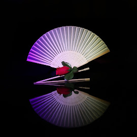 Light painted Fan  by Cecilia Laird - Artistic Objects Other Objects ( light painting, asian fan, reflective surface, led lights, bamboo fan, woman, b&w, portrait, person )