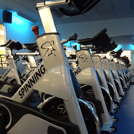 BIKES by Pal Mori - Sports & Fitness Fitness