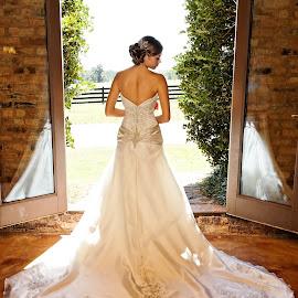Niki by Brooke Green - Wedding Bride ( natural light, wedding photography, wedding, bridal portrait, bride, people, portrait )