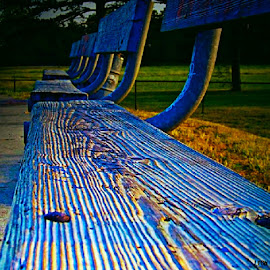 Blue Benches by Lauren Nicholls - Artistic Objects Furniture ( skate park, benches, wood, blue, texture, lines, Chair, Chairs, Sitting,  )