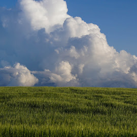 Evening Raincloud by Tammy Drombolis - Landscapes Cloud Formations