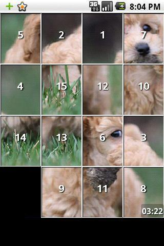 Poodle dog and puppy puzzles