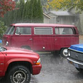 Portland Rain by Liz Hahn - City,  Street & Park  Neighborhoods ( raining )