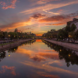 Reflections by Ariseanu Genu - City,  Street & Park  City Parks (  )