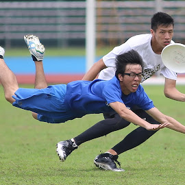 Frisbee by Eddie Seng - Sports & Fitness Other Sports ( frisbee )