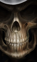 Screenshot of Skulls Wallpapers
