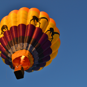 Great Colors by Corinne Noon - Transportation Other ( flying, flames, colors, hot, air, vibrant, transportation, balloon )