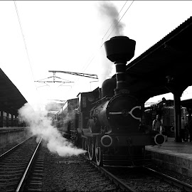 Old by Catalin Ionut - Transportation Trains ( bucharest, railway, locomotive, railroad, train, power, romania, steam,  )