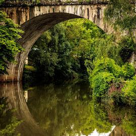 Bridge Reflection by Laurent Adien - Buildings & Architecture Bridges & Suspended Structures