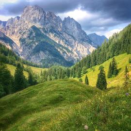 Alpen by Johana Starová - Landscapes Forests ( 5.5.2005 )
