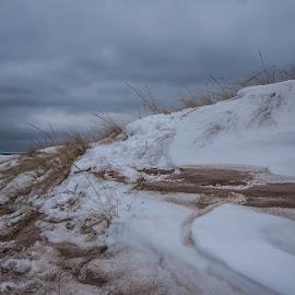|| Snowy Swirling Sand || by Karyn Marcinowski - Landscapes Beaches ( sand, winter, cold, snow, beach )