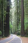 Californien 272.jpg