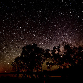 Starry Nights by Right Image Photography - Landscapes Starscapes ( amazing, wow, d800e, bundaberg photographer, bundaberg photography, like, nikon, landscapes, right image photography )