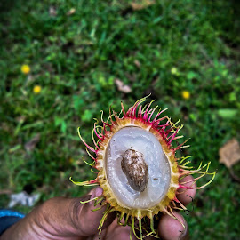 Rambutan by Jr Eduave - Nature Up Close Gardens & Produce