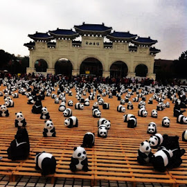Pandas World Tour-in Taipei... by Rosafe Soliven - City,  Street & Park  City Parks