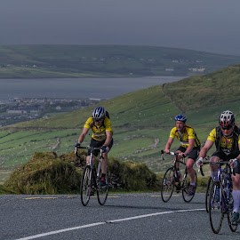 Cycling up the hill  by Gerald Horgan - Sports & Fitness Cycling ( adventure, ireland, dingle, dingle peninsula, cycling, sports, landscape )