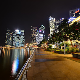 Walking towards Financial Hub by Abang Long - City,  Street & Park  City Parks ( night walk, financial hub, nikon d7000, singapore, nightscape )