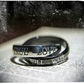 True Love by April Lewis - Artistic Objects Jewelry ( love, true love, rings, bible, object, artistic, jewelry )