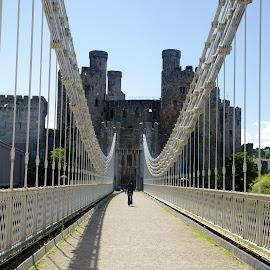 Castle Conwy by Ferdinand Debnárik - Buildings & Architecture Bridges & Suspended Structures