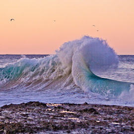 Golden Hour by M S - Landscapes Beaches ( ocean wave backwash gold coast )